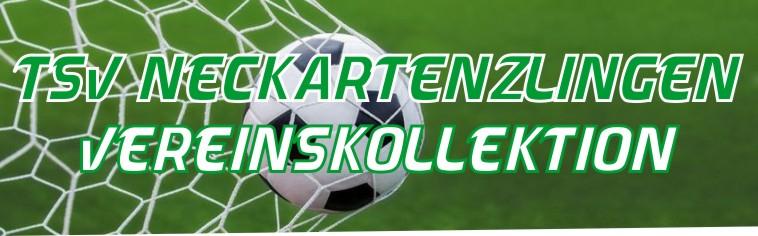 TSV Neckartenzlingen